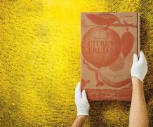 tachen_book_of_citrus_3.jpg