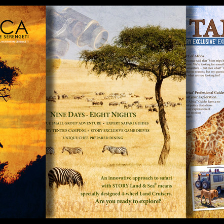 Tour Company Brochure