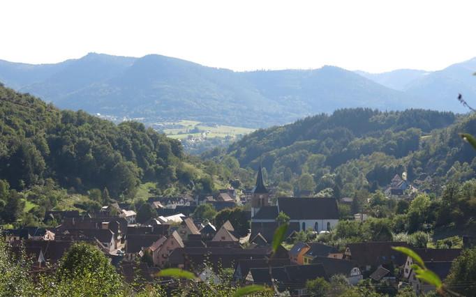 Albé : un vignoble de montagne en Alsace