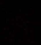 Muki_Logo.png