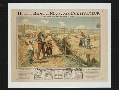 C comme... Cultivatrice, laboureuse, ouvrière agricole : Le métier de la terre par les femmes.