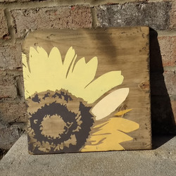 Sunflower or Daisy