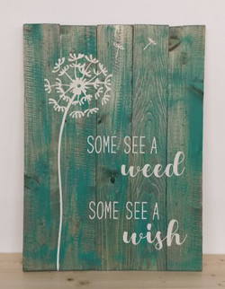 Dandelion - Some See a Weed Some See a W
