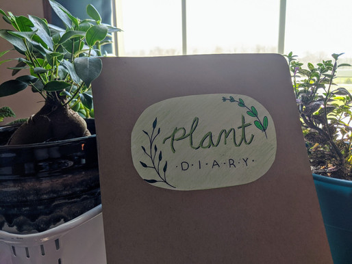 Creating a Plant Diary: How to Keep Track of all Your Houseplants' Needs