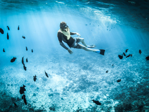 Reef Safe Sunscreen: What Is It and Where Can I Get It?