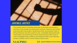 Juvenile_Justice_2