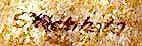 Shacsihata - signature