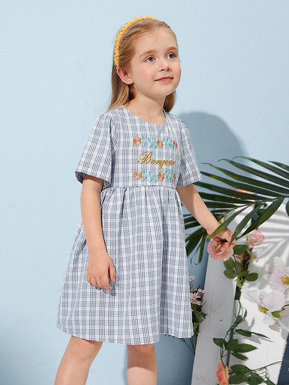 Plaid Embroidered Bonjour Dress