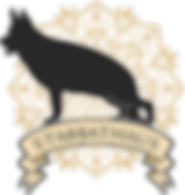 STABBATHAUS logo by vojinstudio gold.png