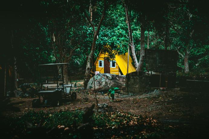 malasia-8.jpg