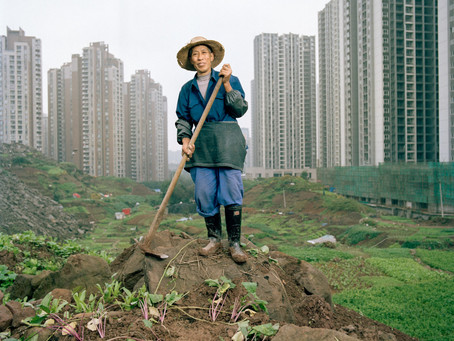 Land Politics and inclusive Urbanisation in China