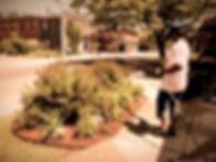 garden_edited_edited.jpg