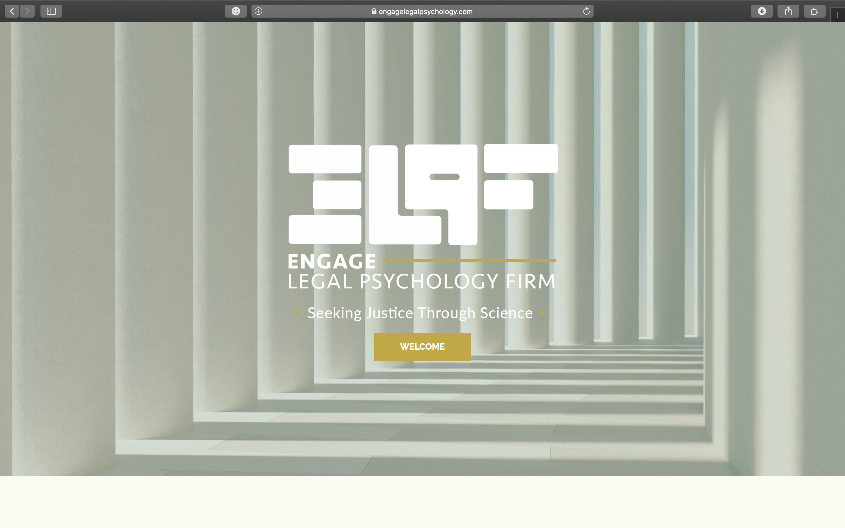 Website Design (Engage Legal Psychology