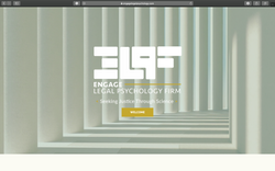 Website Design (Engage Legal Psychology