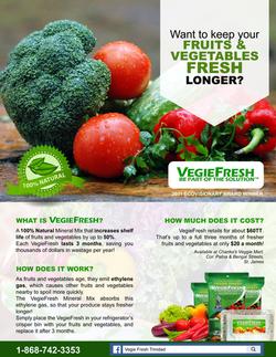 VegieFresh Flyer Design