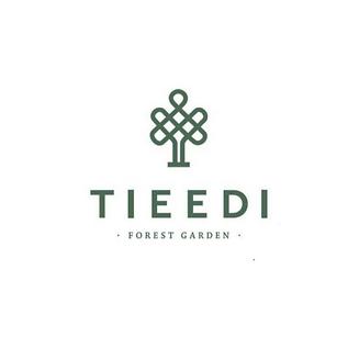 tieedi logo.png
