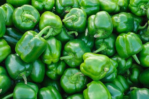 Capsicum (Green)