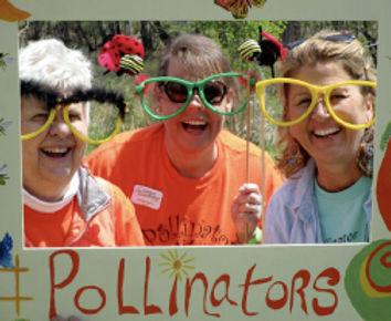 pollinators_3.jpg