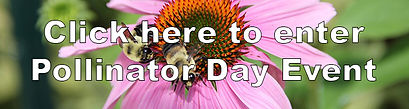 Pollinator_Day_Enter_Button.jpg
