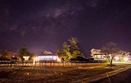 Albert River Wines tamborine wedding at night slow shuter and galaxy