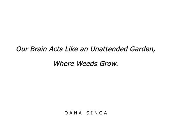 Our brain acts like an unattended garden