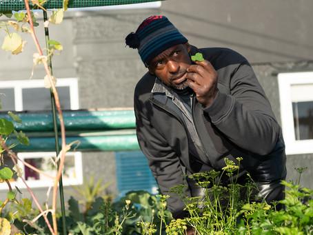 (Ita/Eng) Bandito Giardiniere / Gangsta Gardener