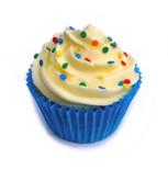 cakes_mixed 003a.jpg