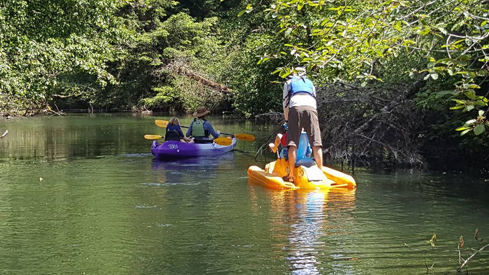 kayak & pedal boats on the Siltcoos River Canoe Trail