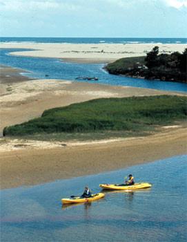 Kayak Rentals Florence Ore