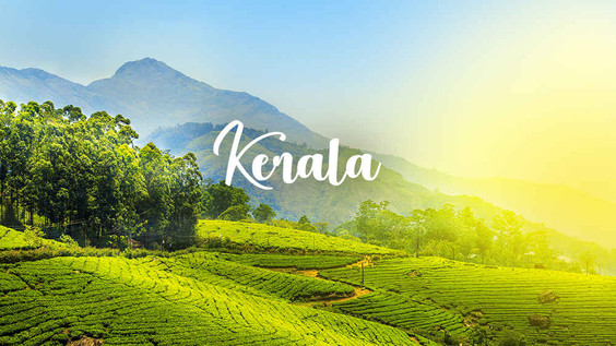 Kerala opens for Travel Early October