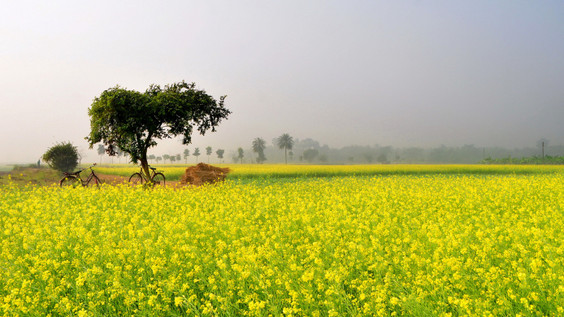 10 Colourful Places in India!!
