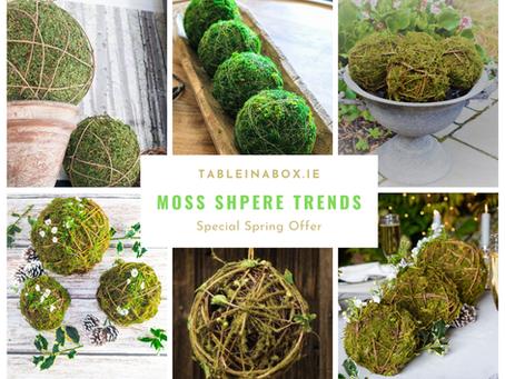 Moss Sphere Trends
