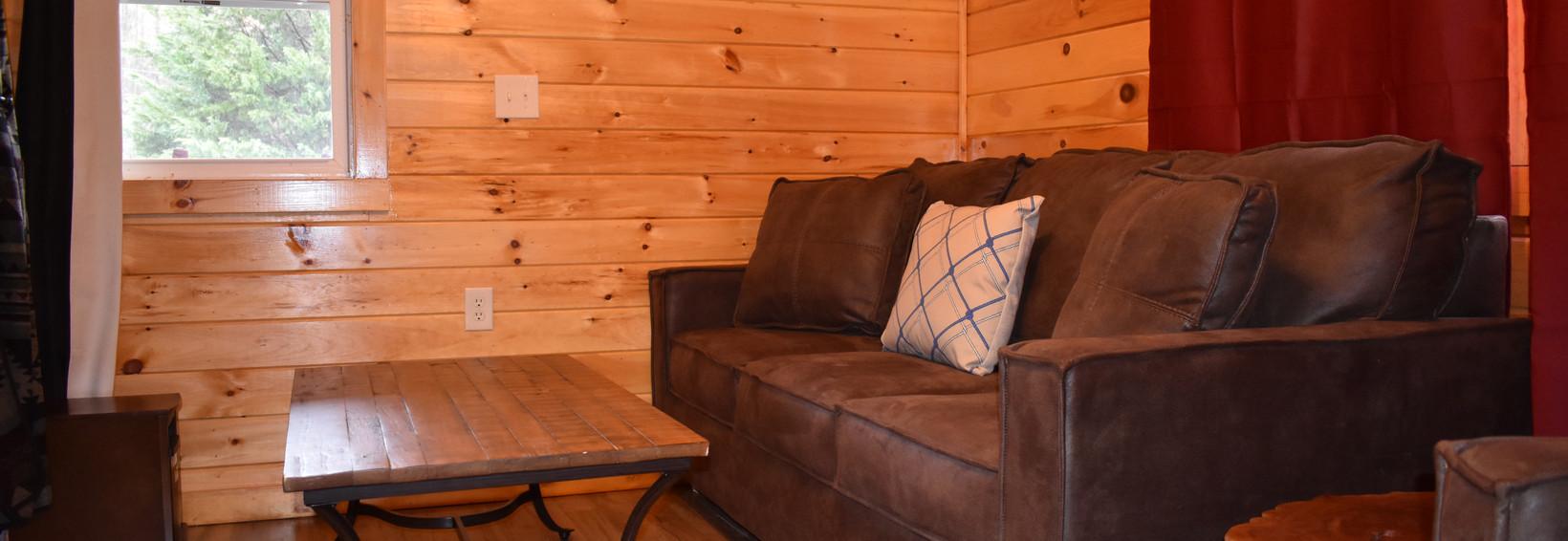 Hummingbird Cabin Living Room 2