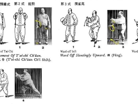 Classic old drawings and photos of Yang Chen Fu postures: Ist part of the 108 form