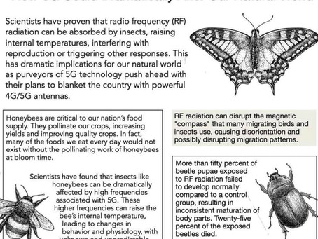 The massive evidence is abundantly clear that 5G is an act of pure evil rolling out on our natural