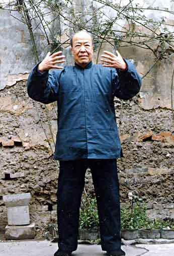 Qigong master.jpg