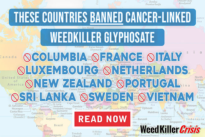 list of countries who have banned it so