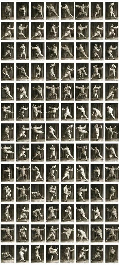 Yang Chen Fu 108 form photos.webp