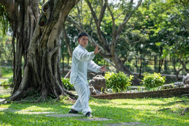 Practice tai Chi Out doors Tai Chi 4 You