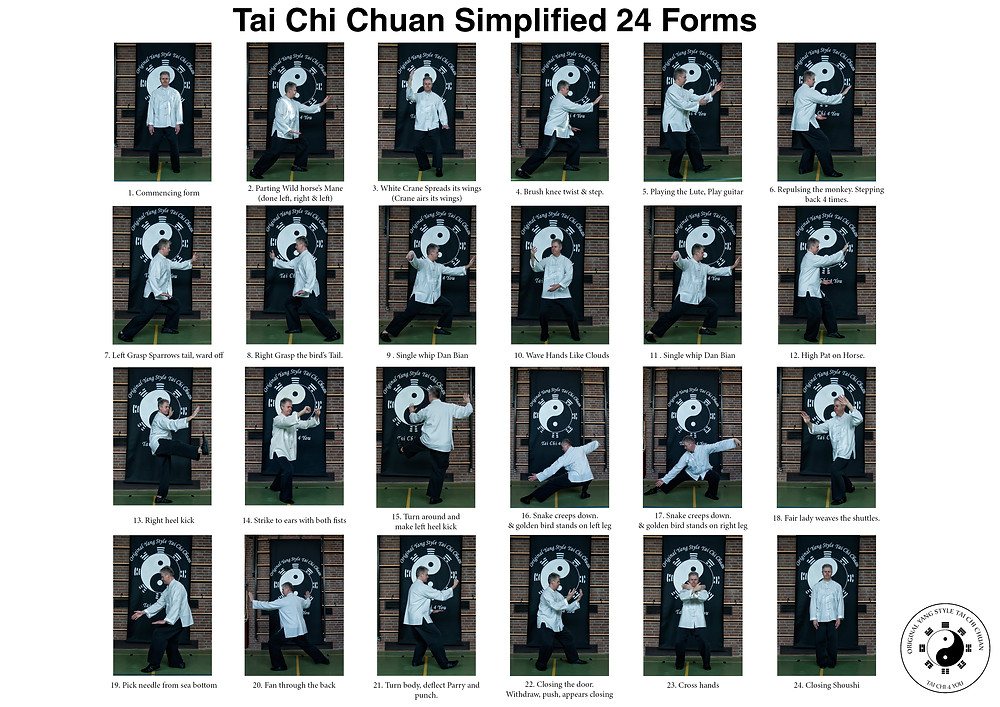 Tai Chi 24 form posture chart by Tony Stewart founder Tai Chi 4 You..jpg