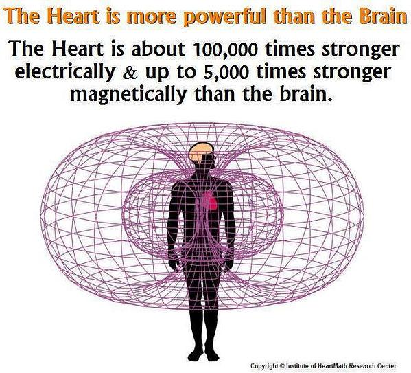 heart-energy heatmath research.jpg