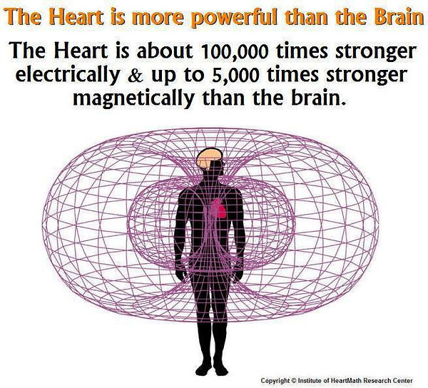 heart-energy heatmath research.jpg