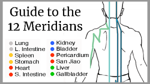 Guided video tour of the 12 meridians of your body