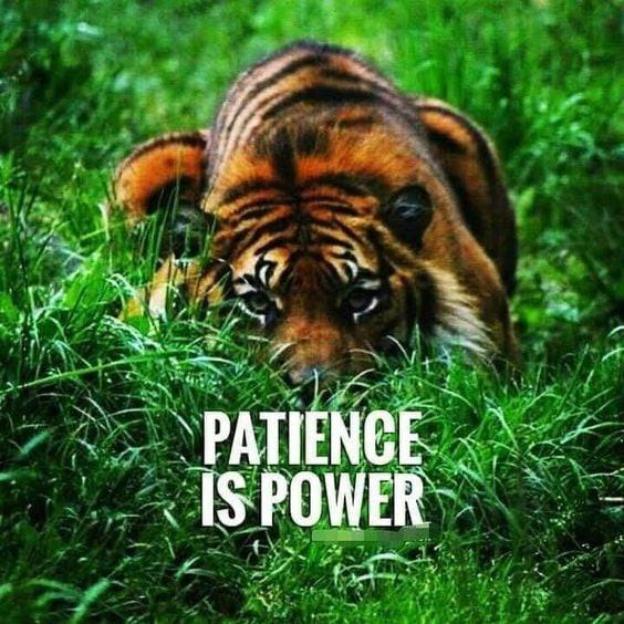 Patience is Power Enjoy Tai Chi and Qigo