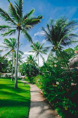 Jardim 2.jpeg