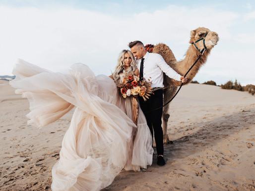 Camel Days