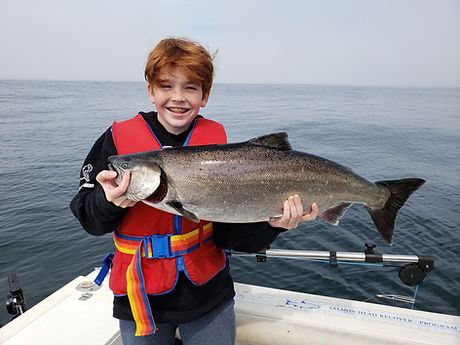 Chinook Salmon.jpg