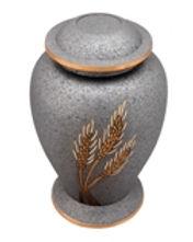 Ash Grey Corn.jpg