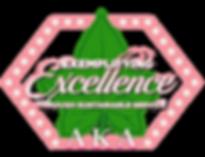 AKA_Excellence_logo_TRANSPARENT.png