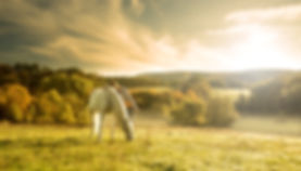 Lifestyle - Horseback Riding.jpeg